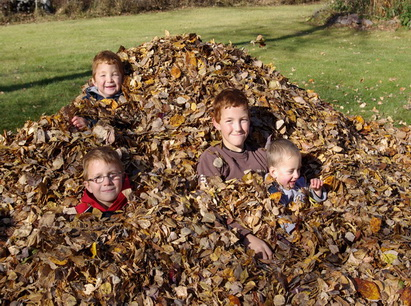 4 boys in the leaves